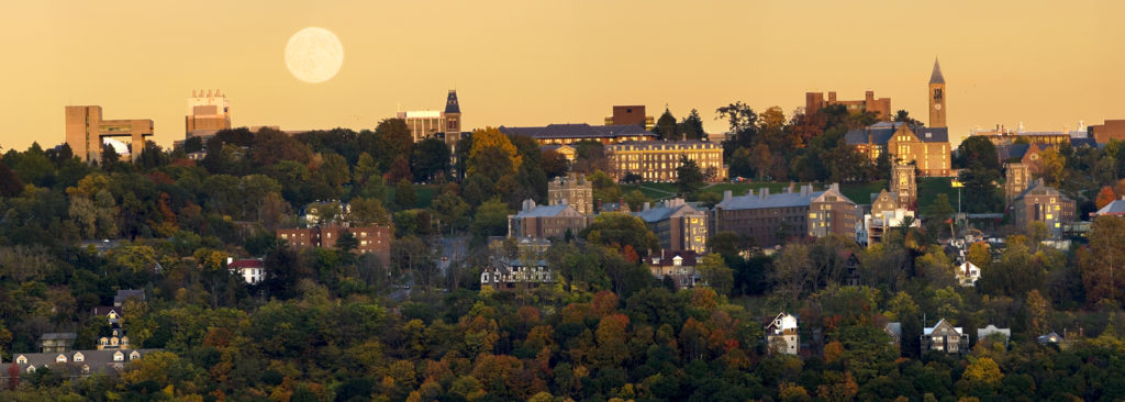 University-Summer-College